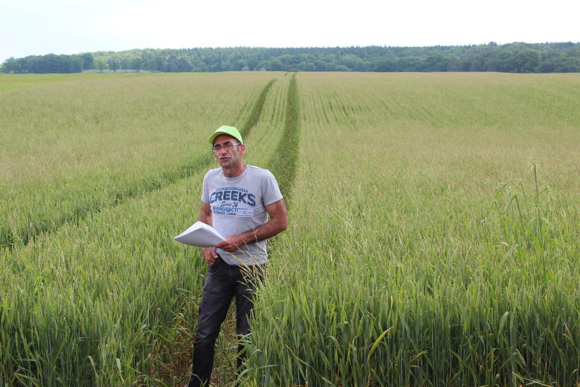Agriculture de conservation chambre d 39 agriculture aube - Chambre d agriculture de la manche ...